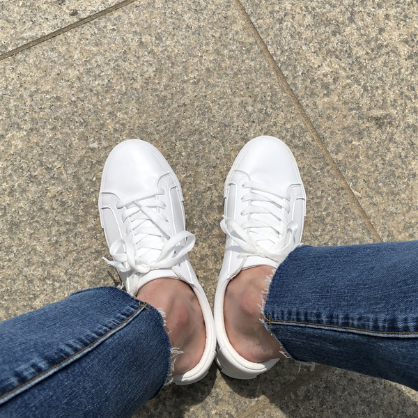 flat swallow sneakers